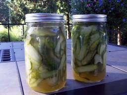 Bread & Butter Sweet Pickles!