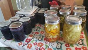 Pickles & Banana Peppers!
