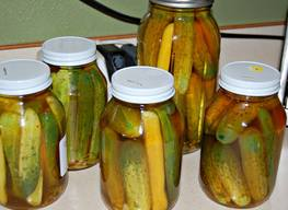 Darn Good Garlic Pickles!