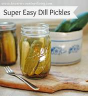 Super Easy Homemade Dill Pickles!