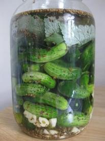 Make Your Own Bubbies Pickles!