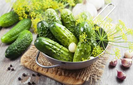 12 Fascinating Pickle Facts!