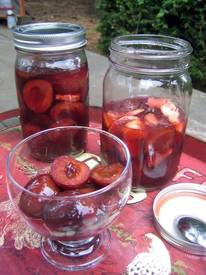 Pickled Plums!