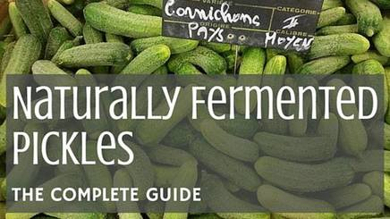 The Complete Guide To Pickles!