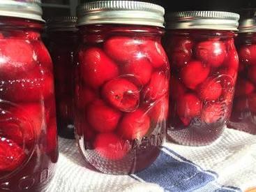 Cherries Galore!