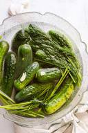Ukrainian Garlic Dill Pickles!