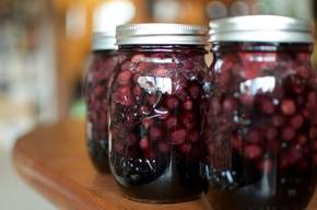 Gingery Blueberry Pickles!