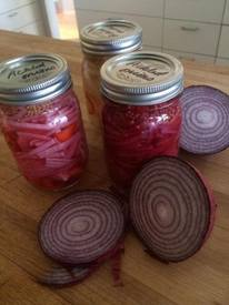 Purple Pickled Onions!
