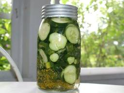 Easy 2 Day Refrigerator Pickles!