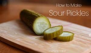 Sour Pickles!