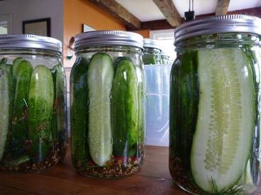 Old Fashioned Pickles!