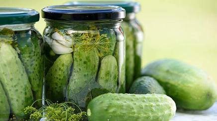 Pickles For The Brain!