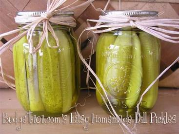 Make Your Own Dill Pickles!