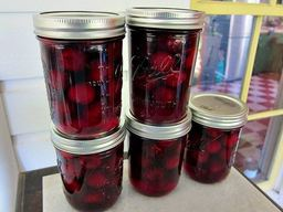 Sweet Cherry Pickles!