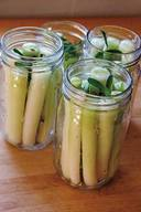 Pickled Cattail Shoots!