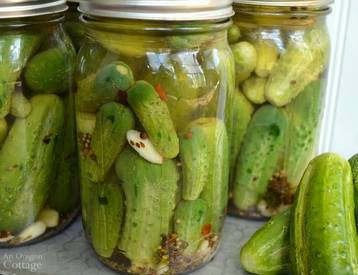 Easy Garlic Dill Pickles!