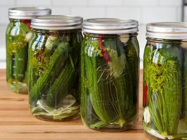 Fermented Dill Pickles!