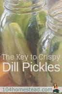 The Key To Crispy Pickles!
