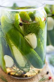 Quick & Easy Dill Pickles!